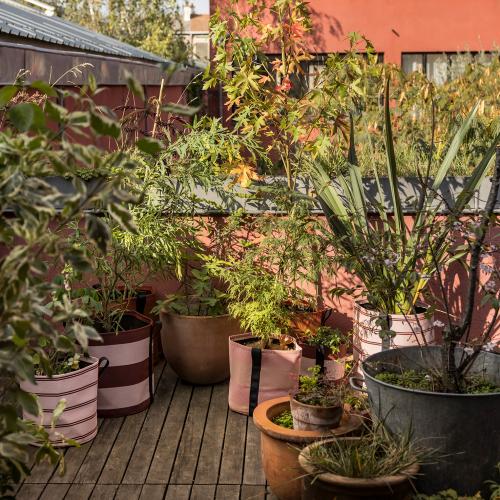 Bacsquare 9 kitchen garden (330L) Olive