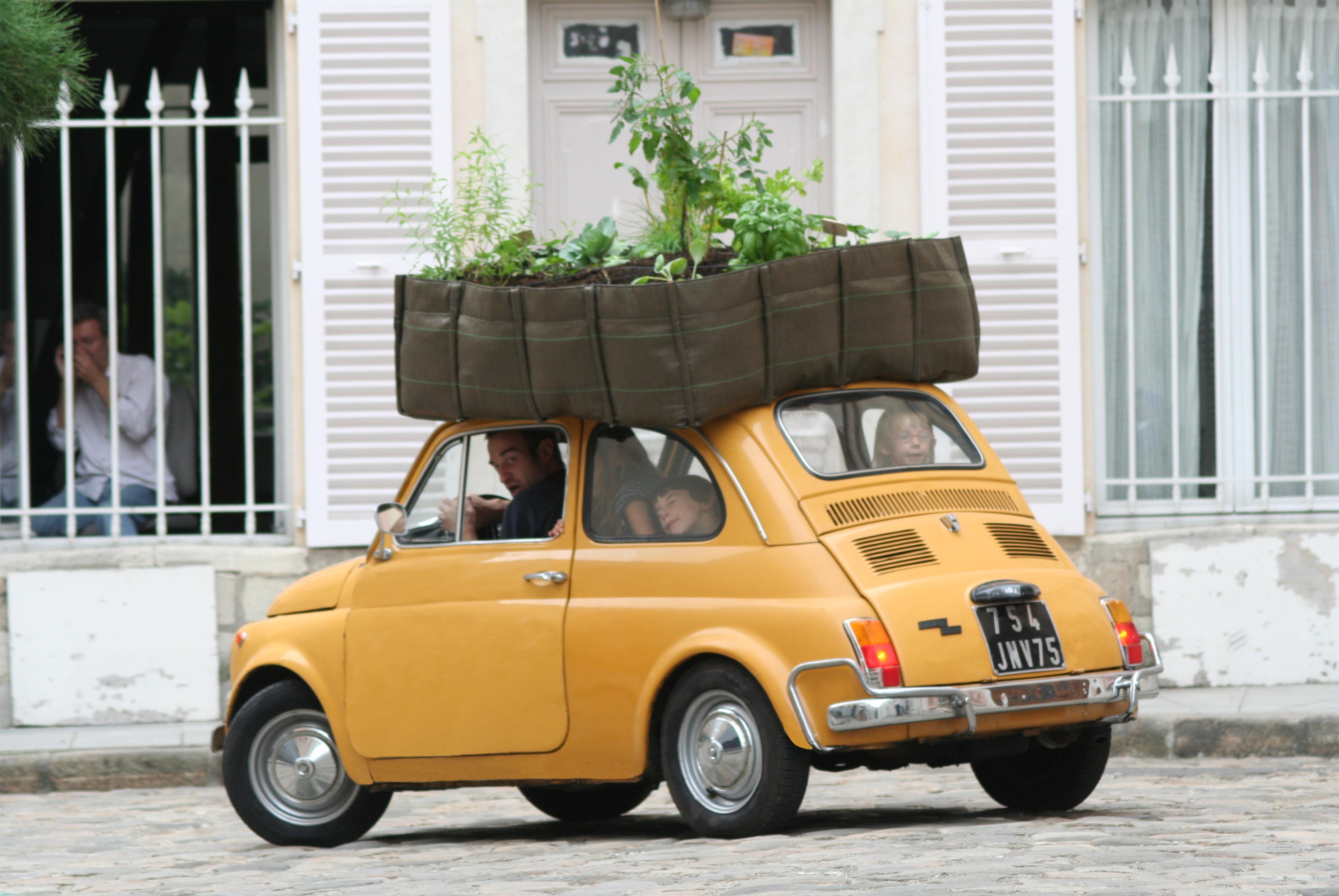 Comment Arroser Jardin Pendant Vacances comment arroser ses plantes pendant les vacances ? - bacsac