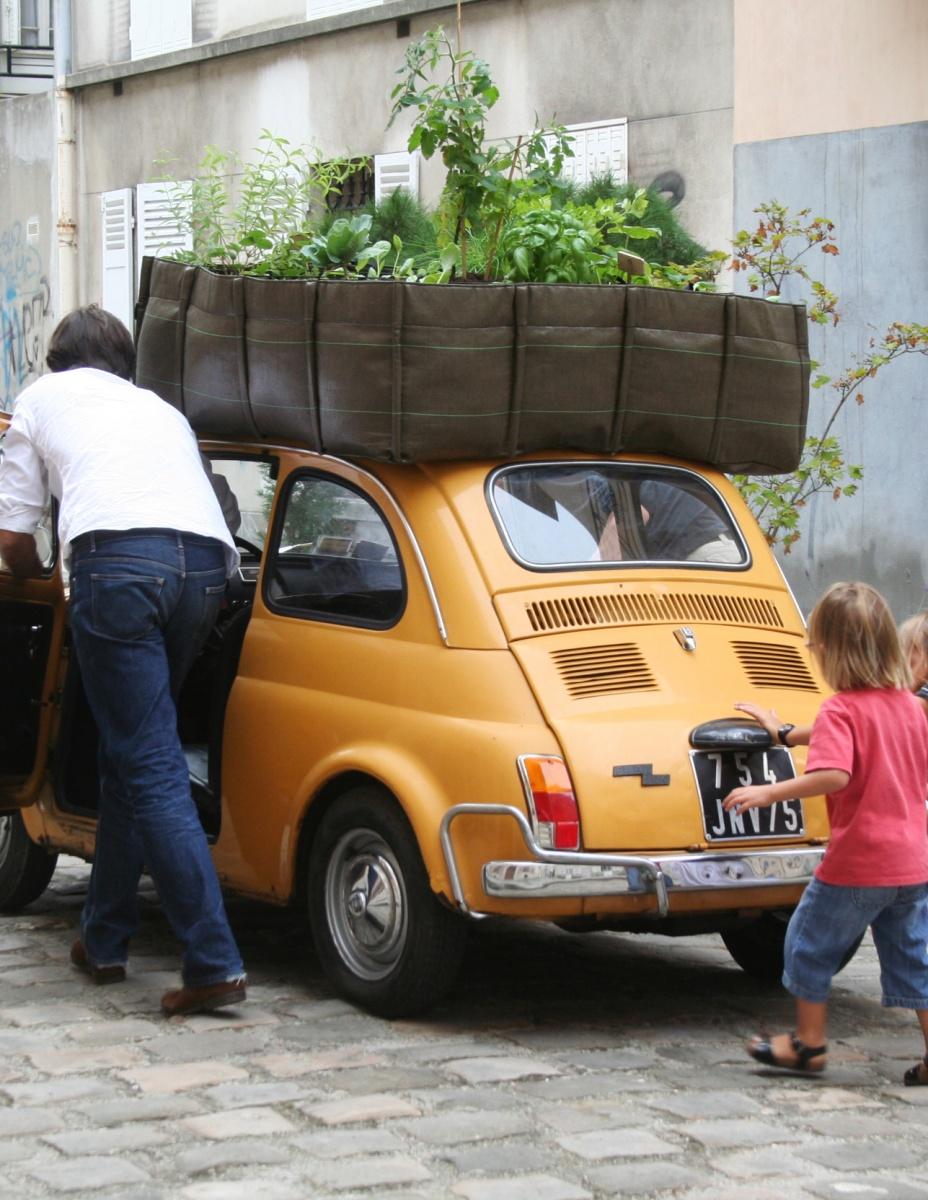 Nos astuces pour arroser ses plantes pendant les vacances